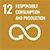 Nexti2i-SDG_0005_E-WEB-Goal-12