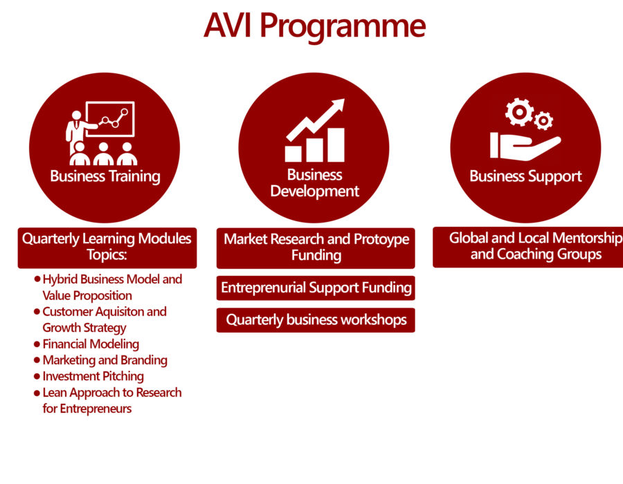 AVI programme graphic-4