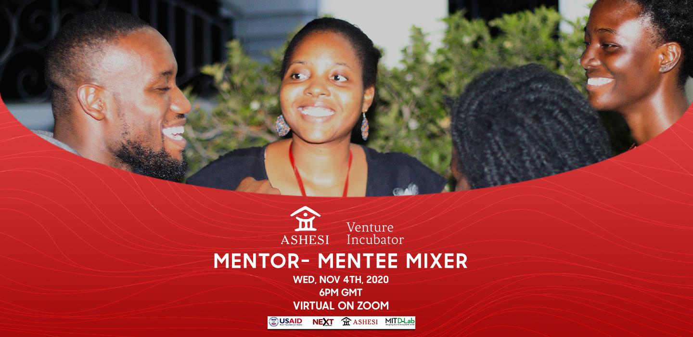 2020-2021 AVI Mentors